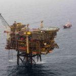 Dreizehenmöwe-Ölplattform