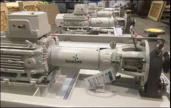 Amarinth titanium pumps