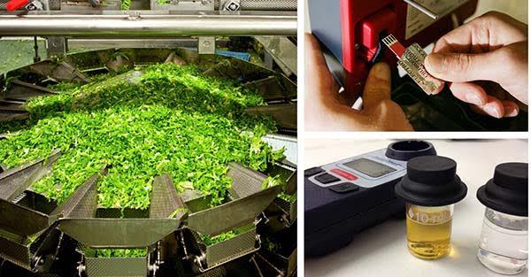 新鲜农产品检测氯气
