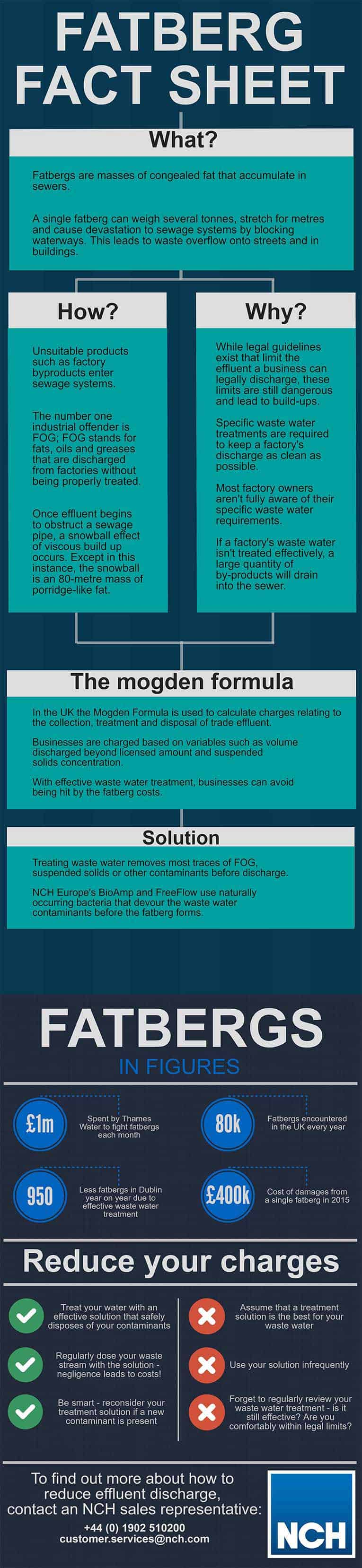 Fatberg infografisch