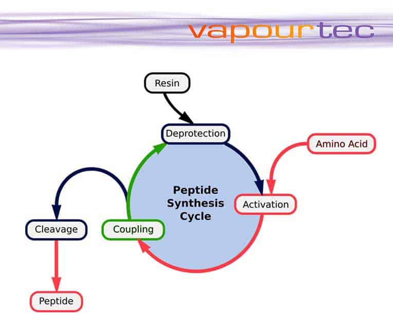 sintesi peptidica