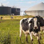 análisis de biogás