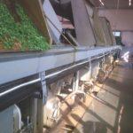 roulements de convoyeur d'usine alimentaire