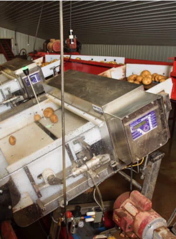 detectores de metais a granel personalizados